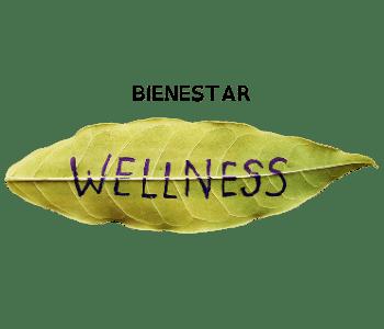 Bienestar – Herbolario Lidia